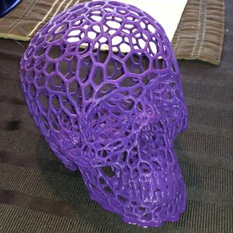 Free 3D print files Skull_-_Voronoi_effect, johnnyspangle
