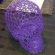 Impresiones 3D gratis Efecto_cráneo_-_Voronoi, johnnyspangle