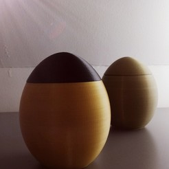 2.jpg Download STL file A hollow egg to hide a surprise! • 3D print design, Rudddy