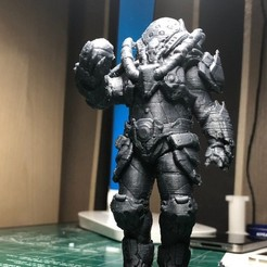 Free 3D print files Scalebearer from Quake Champions, indigo4