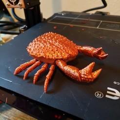 Descargar diseños 3D gratis Porta cangrejo esponja., Capt_Nemo