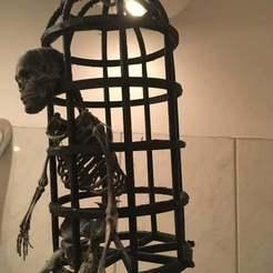 IMG_5027.jpg Download STL file Pirate cage for skeleton • 3D print design, Lammesky