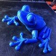 Download STL file Cute Flexi Print-in-Place Frog • Template to 3D print, Lammesky