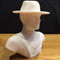 IMG_1859.JPG Télécharger fichier STL gratuit Le buste de Terence Hill - Pas de coupe de soutien • Modèle imprimable en 3D, Bengineer3D