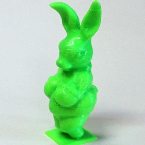 IMG_1400_display_large_display_large.jpg Télécharger fichier STL gratuit Lapin de Willendorf • Modèle à imprimer en 3D, Revalia6D