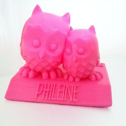 Download free STL file Baby Gift: Cuddling Owls on Name Plate, Runstone