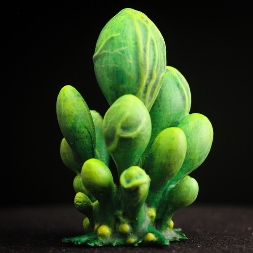 "blobs03.jpg Download free STL file Tabletop plant: ""Blob Crowd Plant"" (Alien Vegetation 15) • 3D printable model, GrimGreeble"