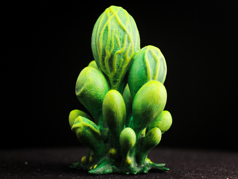 """blobs01.jpg Télécharger fichier STL gratuit Installation de table : """"Blob Crowd Plant"""" (Végétation exotique 15) • Objet pour imprimante 3D, GrimGreeble"""