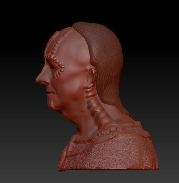 dc1839ba095239e538ddebbb7d6004d8_display_large.jpg Download free STL file Cardassian bust • 3D print object, poblocki1982