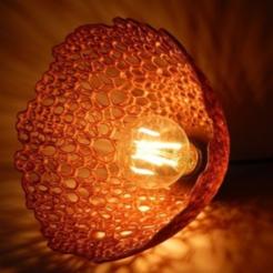 Screenshot_12.png Télécharger fichier STL gratuit lustre de lampe • Design à imprimer en 3D, gaevskiiy