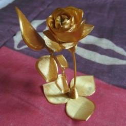 Screenshot_11.png Télécharger fichier STL gratuit Rose • Plan pour imprimante 3D, gaevskiiy