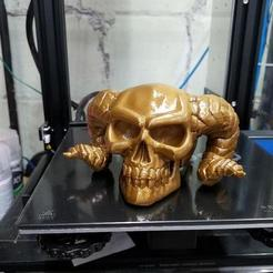 "Download free 3D printer designs 2"" Receiver Cover w/Demon Skull - just snaps in, Psychobillyman"