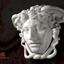 20141019_MedusaRondanini_by_CosmoWenman_display_large.jpg Download free OBJ file The Medusa Rondanini • 3D print template, Ghashgar