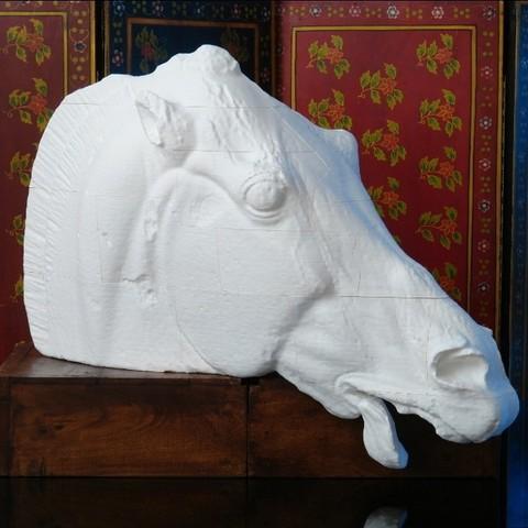 Horse_of_Selene_Progress_Print_display_large.jpg Télécharger fichier STL gratuit Tête d'un cheval de Sélène • Objet pour imprimante 3D, Ghashgar