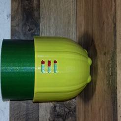 20200221_182556.jpg Télécharger fichier STL pot de fleur auto hydratant • Modèle imprimable en 3D, psykotron69