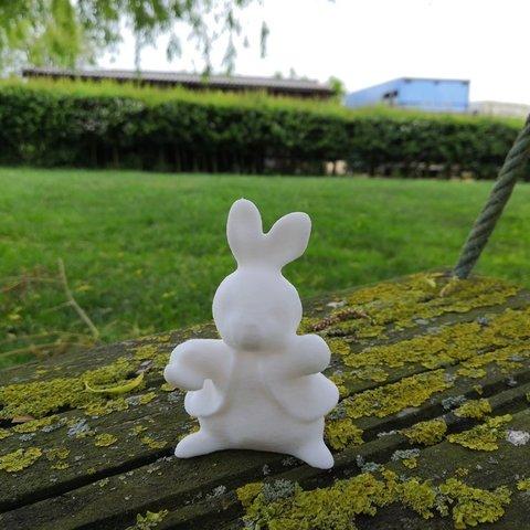 Download free STL file Peter Rabbit • 3D print model, spofff