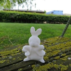 Download free 3D print files Peter Rabbit, spofff