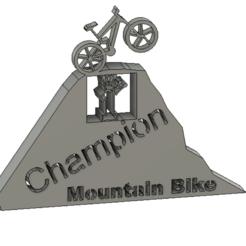 Download free 3D model Mountain Bike Trophy, sachaessner2