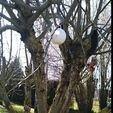 Free STL nesting box for chickadee birds/birdhouse, gamdy