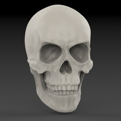 untitled.162.jpg Download STL file Classic Skull • 3D printer model, freeclimbingbo