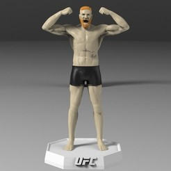untitled.426.jpg Download STL file Conor Mcgregor • 3D printing design, freeclimbingbo