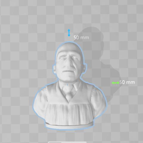 Download free 3D print files Voldemort - Bust - 80mm, Alice_Masked
