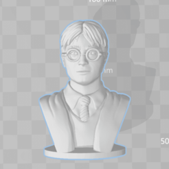 Download free 3D model Harry Potter - Bust - 80mm, Alice_Masked