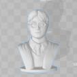 Capture d'écran (256).png Télécharger fichier STL gratuit Harry Potter - Buste - 80mm • Modèle à imprimer en 3D, Alice_Masked