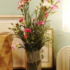 vasoconfiori.jpg Download STL file Ribbed flower pot vasemode • 3D printer design, DavideL
