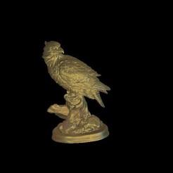 Télécharger fichier STL gratuit buste d'aigle, 3Dprintablefile