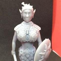 IMG_1494.JPG Download free STL file Half Elf Cleric • 3D printer object, Pza4Rza
