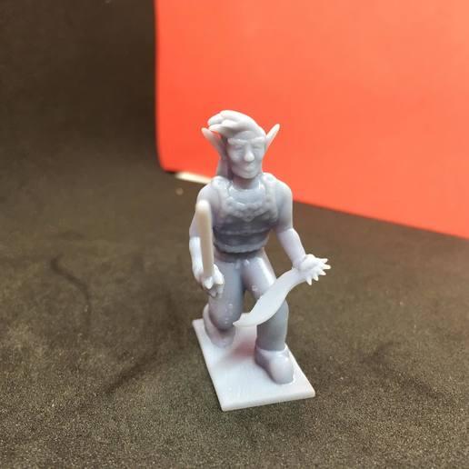 87199798_203501424100036_81053498516522926081_n.jpg Download free STL file Eladrin Elf Rogue • 3D print model, Pza4Rza
