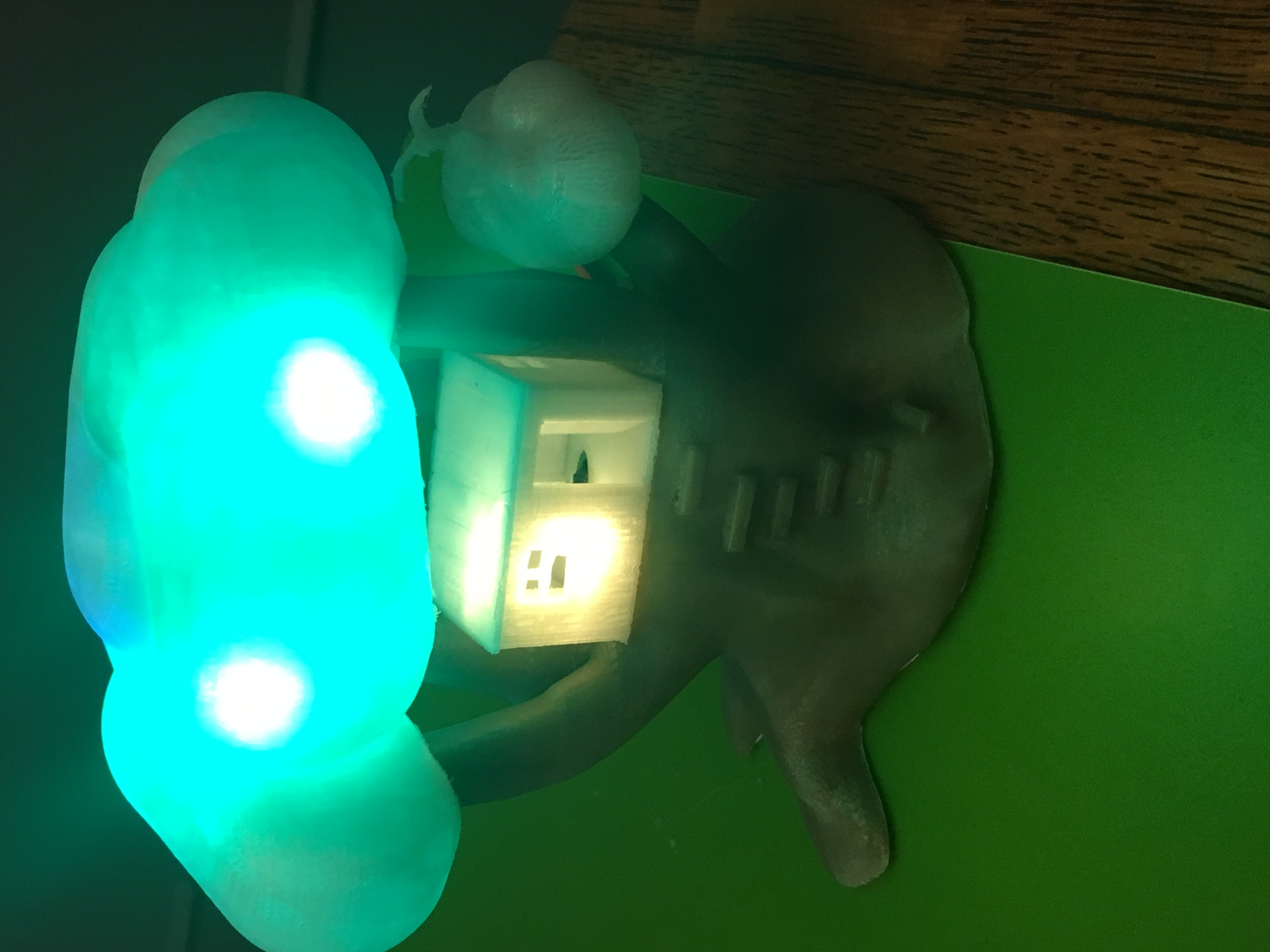 IMG_5051.JPG Download free STL file Improved, but still pretty simple,Tree House Night Light • Design to 3D print, Pza4Rza