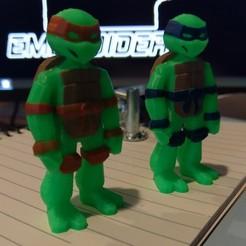 Free STL file TEENAGE MUTANT NINJA TURTLES - TMNT, LouiePolo