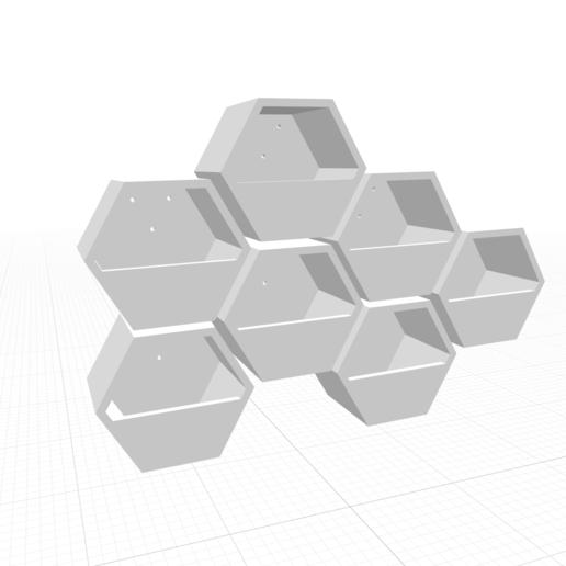 Screen Shot 2020-10-18 at 16.31.32.png Télécharger fichier STL Moule hexagonal en béton pour jardinières murales v1 • Design à imprimer en 3D, haya_farm