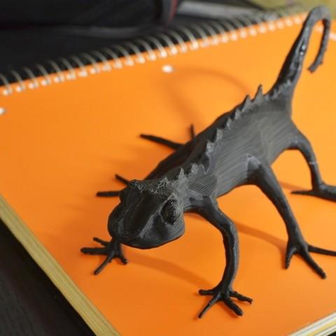 Download free 3D printer model Skitter Lizard, aevafortinhi
