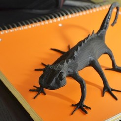 Free 3D printer files Skitter Lizard, aevafortinhi