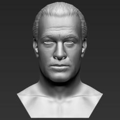 1.jpg Télécharger fichier STL Steven Seagal a fait sauter l'impression 3D des formats stl obj prêts • Plan imprimable en 3D, PrintedReality