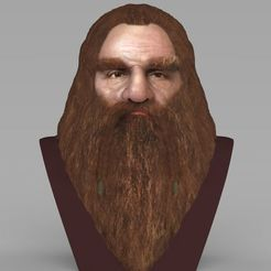 Download 3D printer templates Gimli Lord of the Rings bust full color 3D printing ready, PrintedReality