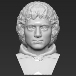 1.jpg Download STL file Frodo Baggins The Lord of the Rings bust 3D printing ready • 3D printing object, PrintedReality