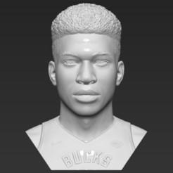 1.jpg Download STL file Giannis Antetokounmpo bust 3D printing ready stl obj formats • 3D printer object, PrintedReality
