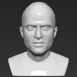 Download free STL file Jesse Pinkman Breaking Bad bust 3D printing ready stl obj • 3D print design, PrintedReality