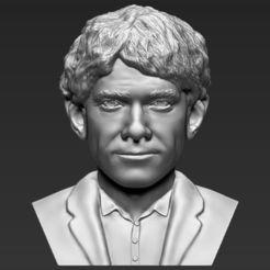 Download 3D printing models Bilbo Baggins Hobbit bust 3D printing ready stl obj, PrintedReality
