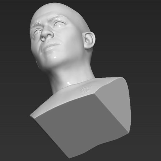 22.jpg Download STL file Ronaldo Nazario Brazil bust 3D printing ready stl obj formats • Template to 3D print, PrintedReality