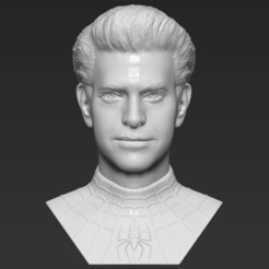 1.jpg Download STL file Spider-Man Andrew Garfield bust 3D printing ready stl obj formats • 3D print template, PrintedReality