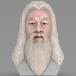 Download 3D printing templates Dumbledore from Harry Potter bust for full color 3D printing, PrintedReality