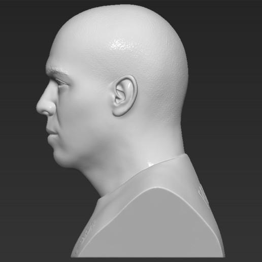 4.jpg Download STL file Ronaldo Nazario Brazil bust 3D printing ready stl obj formats • Template to 3D print, PrintedReality