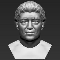 Descargar archivo STL Diego Maradona busto de impresión en 3D listo stl obj formatos • Objeto para impresión 3D, PrintedReality
