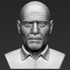 3D print model Walter White Breaking Bad bust 3D printing ready stl obj, PrintedReality