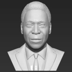 Descargar STL Pele bust 3D printing ready stl obj formats, PrintedReality
